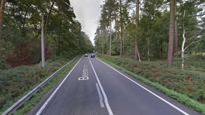 """Vergunning voor nieuw dubbelrichtingsfietspad tussen Wingene en Beernem definitief vernietigd: """"Niet zo dat we voor de vleermuizen zijn en tegen de fietsers, maar het moet veiliger"""""""