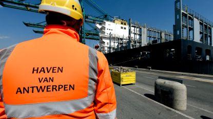 Havenarbeiders moeten vaker stempelen, maar er wordt ook veel extra volk aangeworven