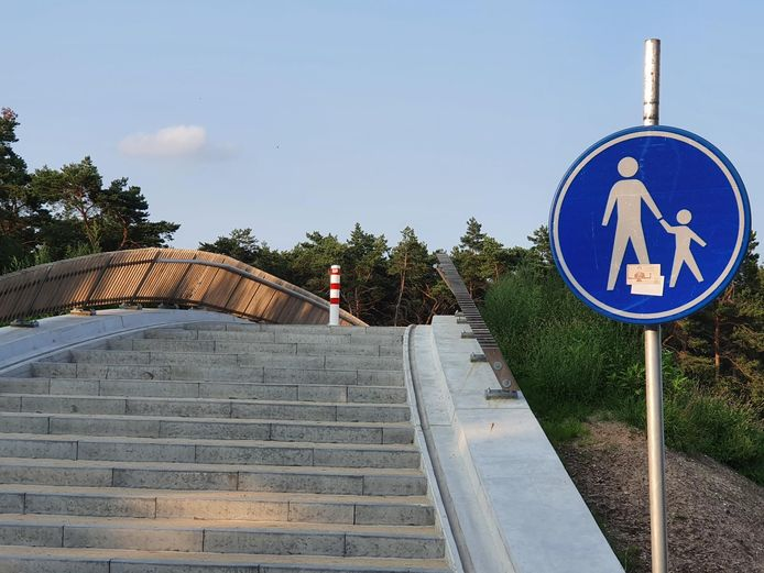 Het voetgangersviaduct in Riethoven is niet bedoeld voor fietsers, zo benadrukt de provincie.