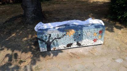 Inwoners geven stad kleur met mozaïekkunst