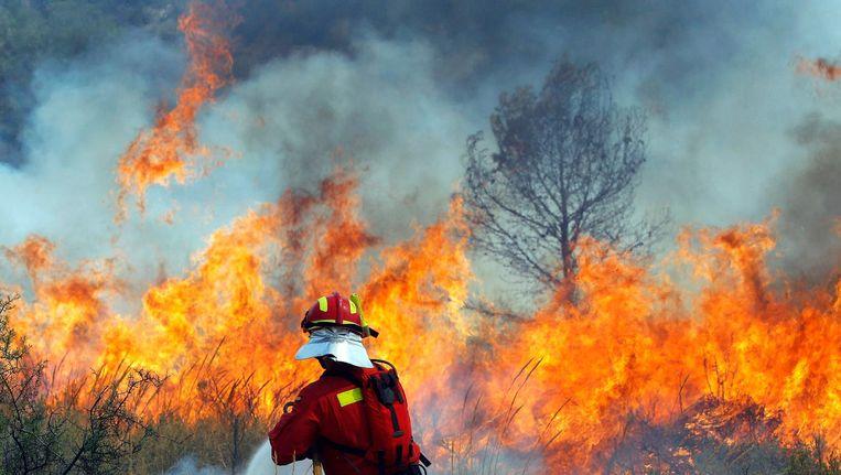 Bosbranden in Zuid-Europa, 2012. Beeld epa