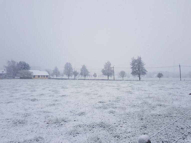 De Grote Weide in Halle wordt stilaan ondergesneeuwd.