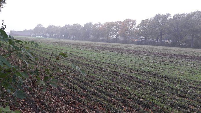 Kernhem-Noord ter hoogte van de Doesburgerdijk. Hier moeten in de toekomst woningen verrijzen.