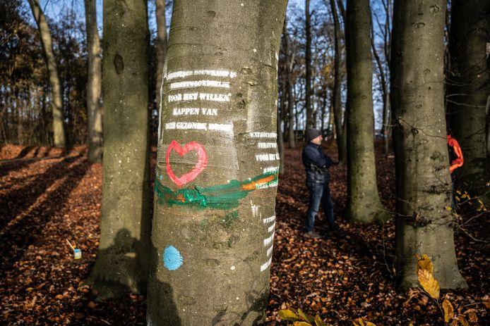 Een hart als teken van liefde voor de boom. Daarboven een plakkaat waarin wethouder Cathelijne Bouwkamp verantwoordelijk wordt gehouden voor de voorgenomen kap. De plakkaten werden na de actie weer verwijderd.