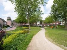 Domweg gelukkig in het hart van Oosterhout: 'Het is echt een storp'
