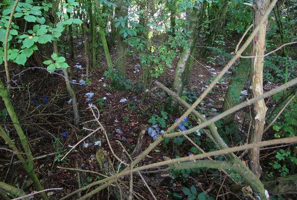 Sommige plekken in de bosjes liggen wel nog vol uitwerpselen en vochtige doekjes omdat buitenlandse truckers er hun grote behoefte doen.