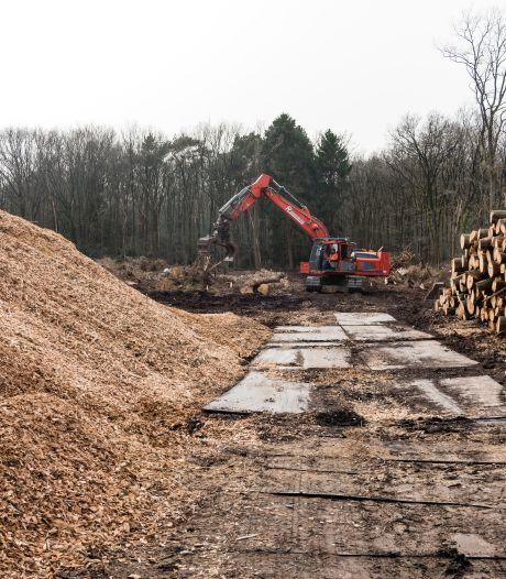 Iedereen is boos over de kap van honderden bomen in Amersfoort, maar het leed is al geschied