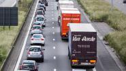Hinder op E17 vanaf maandag: onderhoudswerken tussen Zwijnaarde en Destelbergen