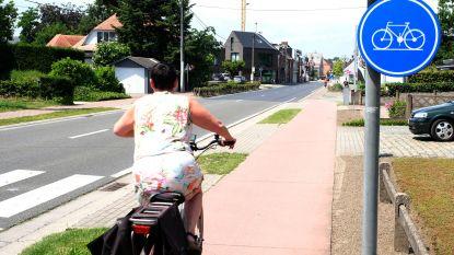 """N-VA wil verkeersborden voor elektrische fietsen, Open Vld-schepen is tegen: """"Geen bordenjungle"""""""