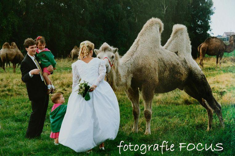 Trouwreportages vond François het leukst. En soms kwam daar een kameel bij kijken.