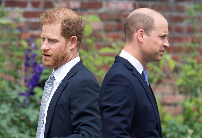 Entre Harry et William, le torchon brûle.