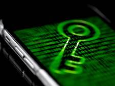 Waardenburgs bedrijf slachtoffer van grote cyberaanval: 'Impact is enorm'