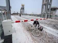 Vastgevroren dode duif brengt brugdek Kampen uit het lood