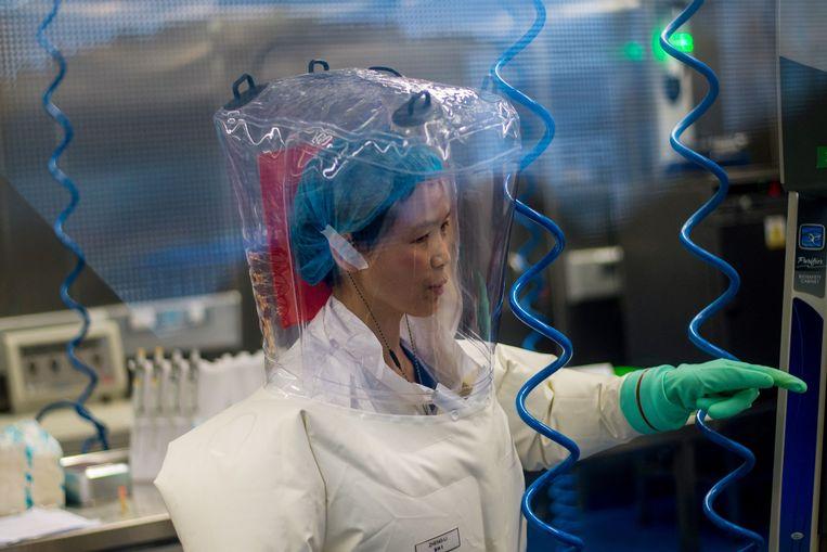 Viroloog Shi Zhengli in haar laboratorium in Wuhan, februari 2017. Beeld AFP