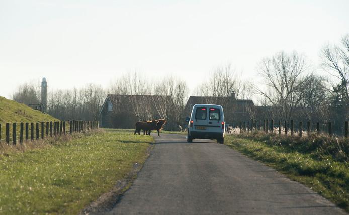 Oppassen geblazen op de wegen in het gebied