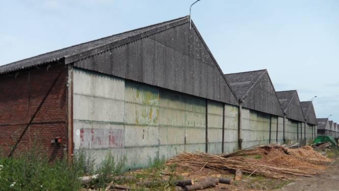 Binnenkort start afbraak van twee loodsen: oud militair domein vol asbest wordt modern gemeentelijk domein