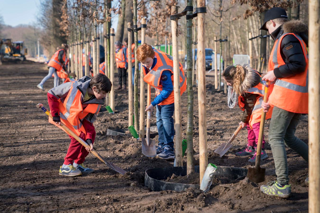 De bomen werden in maart  door schoolkinderen geplant.
