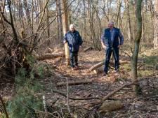 Vraagtekens bij kaalslag in Nunspeets bos: 'Moeten juist zuinig zijn op onze natuur'