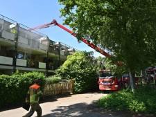 Brand op dak van appartementencomplex in Breda: flinke rookwolk te zien
