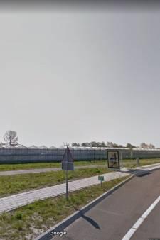Kassen maken plaats voor 'dorp' voor 700 arbeidsmigranten in De Lier
