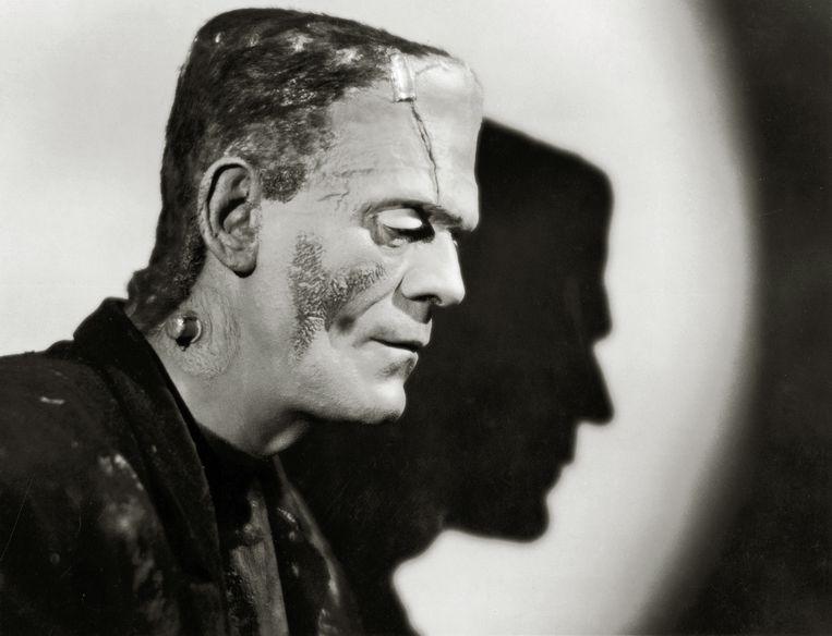 Boris Karloff in de film Frankenstein, 1931. Beeld © The Hollywood Archive