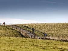 Zonneparken in Meierijstad oogsten veel kritiek, 'Lokaal eigendom is wassen neus'