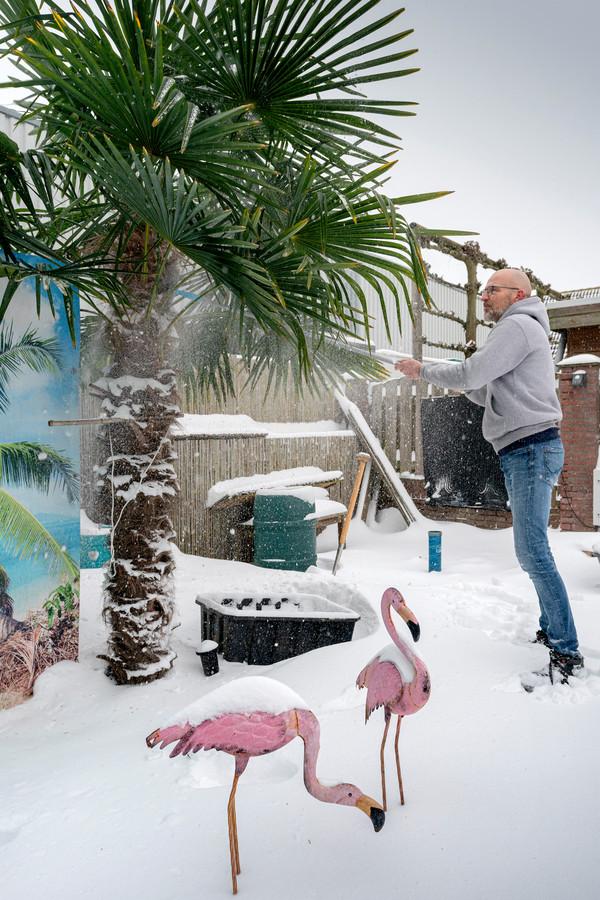 Niet iedereen heeft de perfecte planten in z'n tuin voor dit winterweer.