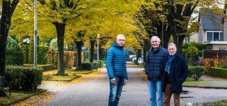 Bewoners Jasmijnstraat Borne beduusd: gemeente wil alle bomen omhakken