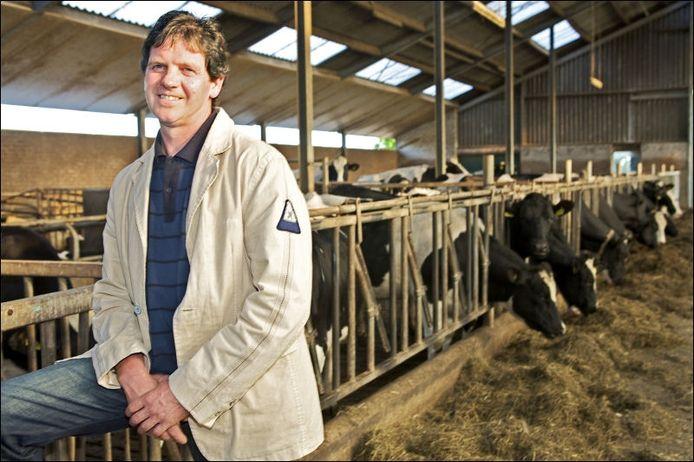 Jan Boeren, die NAC al twee seizoenen van dienst is, bij zijn koeien. 'Vraag me niet hoe, maar ik zie in welke mate spelers weerstand hebben'. Foto Johan Wouters/het fotoburo