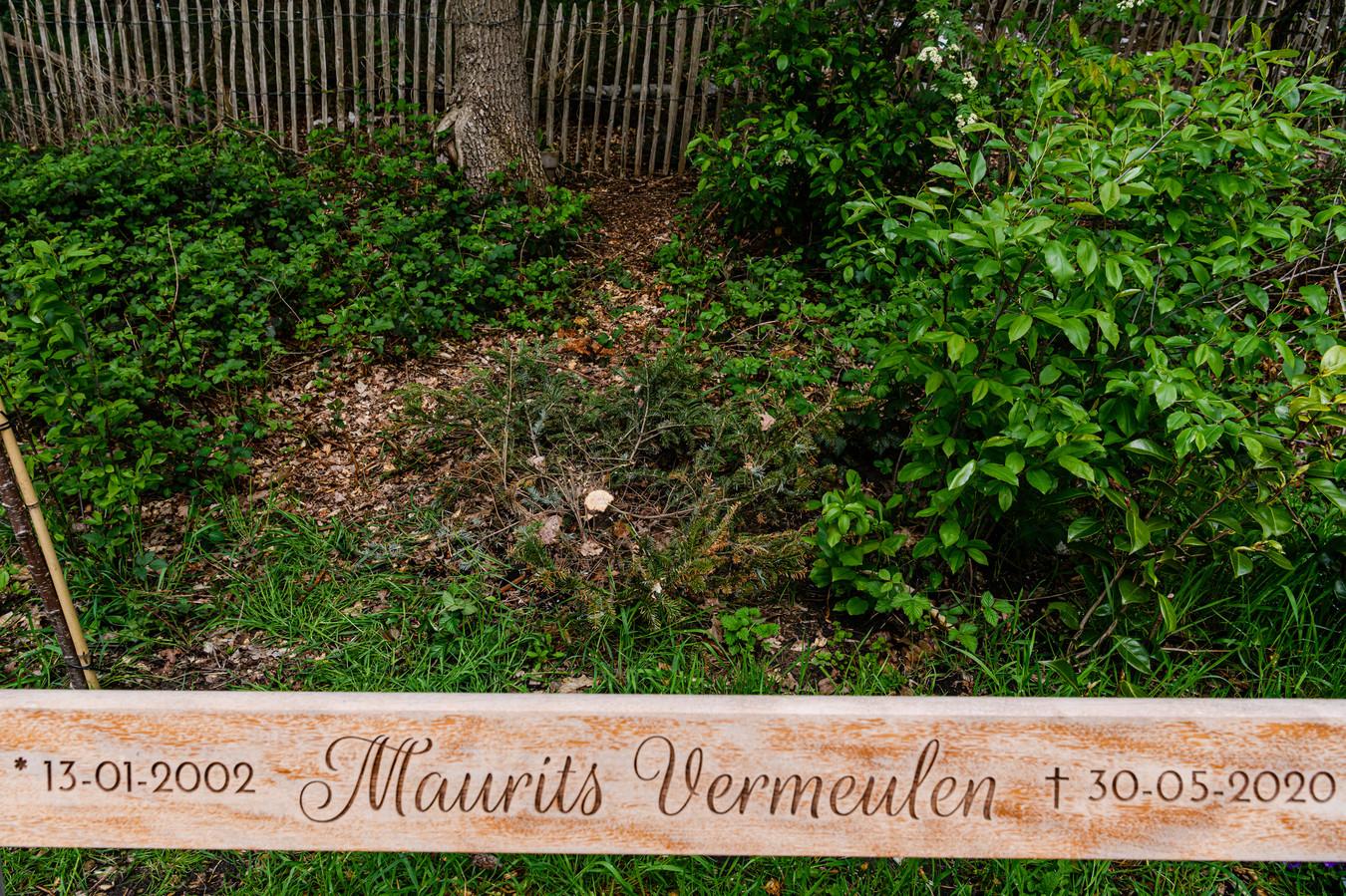 Gedenkplek voor Maurits Vermeulen langs de N237. Het stompje van de omgezaagde herinneringsboom is nog net te zien.