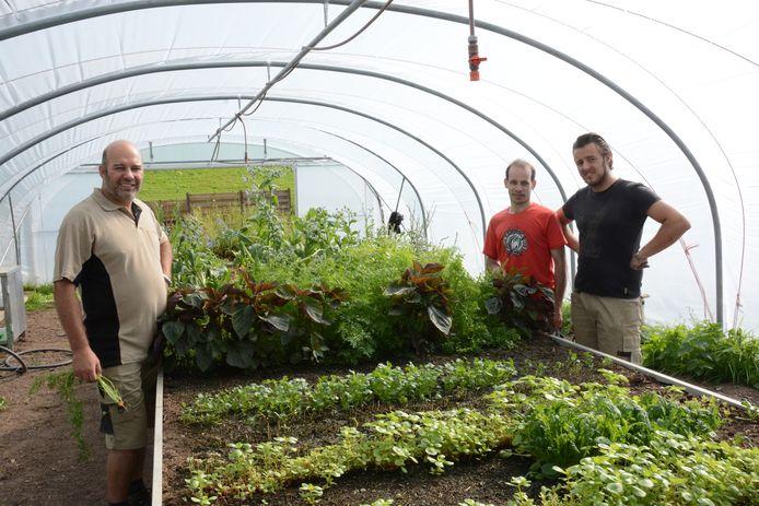 Chef Kris De Roy (links) in de eigen moestuin waar de groenten gekweekt worden voor het Hofke van Bazel.