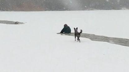 Moedige vrouw gaat door ijskoud water om hond te redden