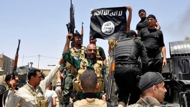 Onderzoek naar banden hulporganisatie ontvoerde Brit en IS