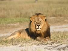 Jager Cecil opnieuw vast voor illegale jacht