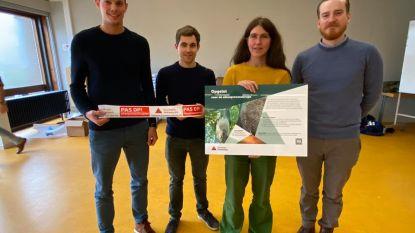 """Provincie bereidt Antwerpse gemeentes en aannemers voor op komst processierups: """"We willen ook inzetten op de sluipwesp en -vlieg"""""""