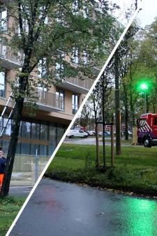 Brandweer verwijdert gevaarlijk hangende boom langs tramlijn