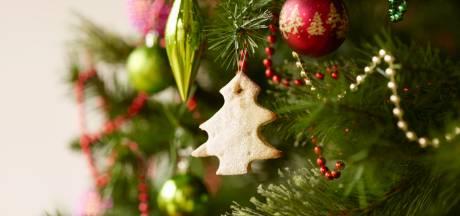 Quatre sites sur lesquels commander son sapin de Noël