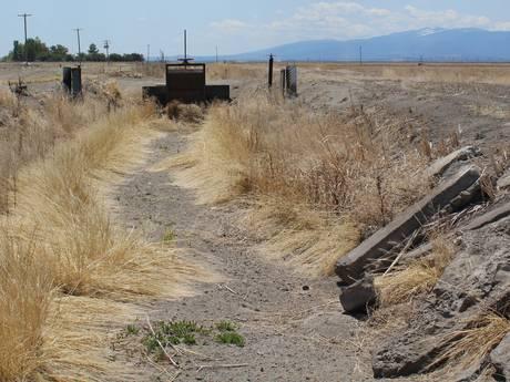 In megadroog Californië dobbert een rivier aan dode vis voorbij