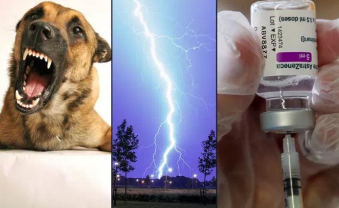 Les chances de mourir à la suite d'une attaque de chien ou après avoir été frappé par la foudre sont nettement plus grandes qu'après avoir reçu une injection du vaccin AstraZeneca.