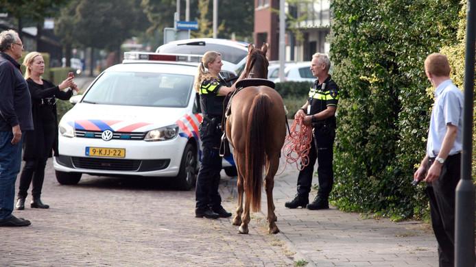 Politiemensen met een van de inmiddels weer gekalmeerde paarden.