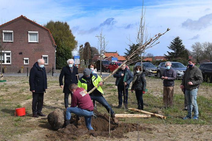 Onder toeziend oog van burgemeester Karel van Soest en Wethouder Jeu Verstraaten wordt de Anne Frankboom geplant.