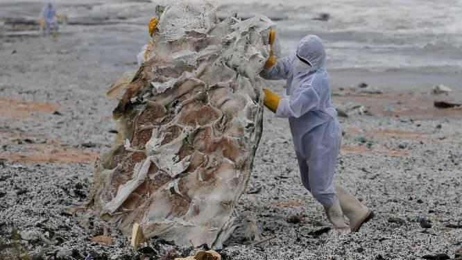 Strand in Sri Lanka bezaaid met plastic korrels afkomstig van brandend schip