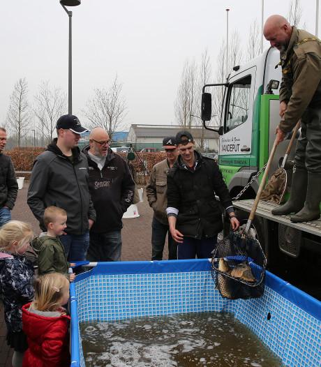 120 knoeperts van Belgische karpers bevolken vanaf nu de Berkel