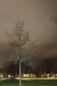 Storm Dennis raast over Twente: 20 meldingen