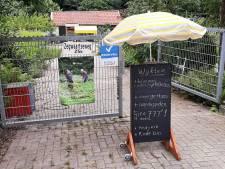 Zoetermeerse uien en bieten leveren geld op voor Limburg