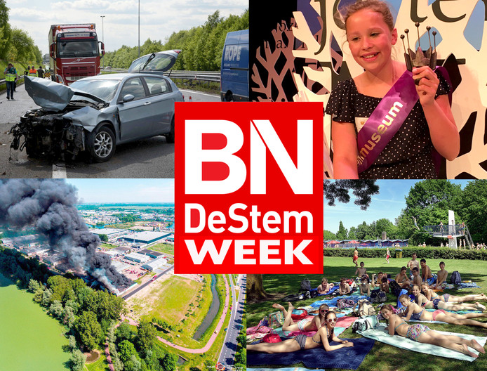 BN DeStem weekoverzicht Week 20