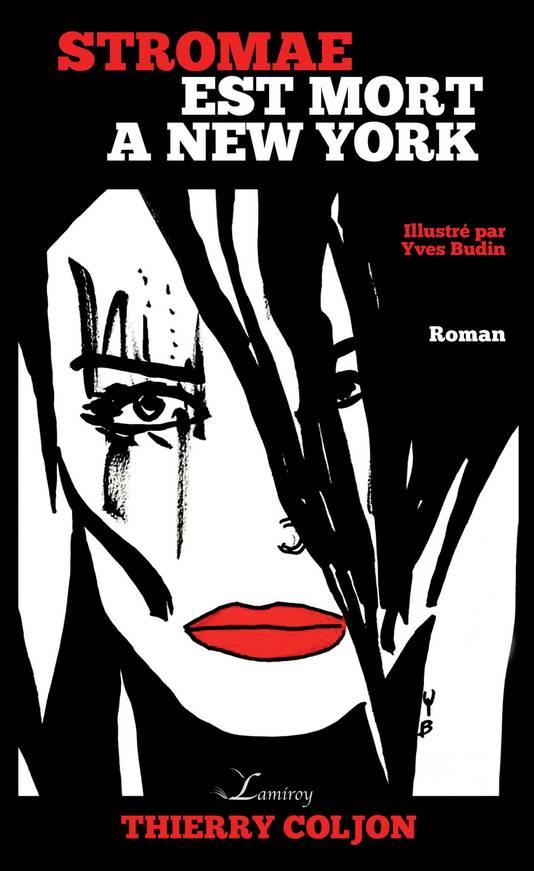 Le roman parlera aux fans de Stromae et aux fanas de New York