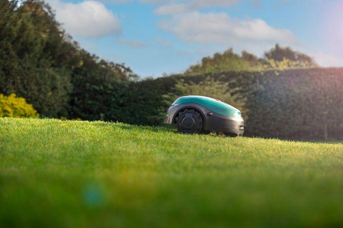 Robotmaaiers zetten hun bestorming van de grasmaaiermarkt verder.