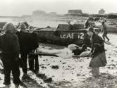 NOS zendt herdenking Slag om de Schelde in Terneuzen rechtstreeks uit