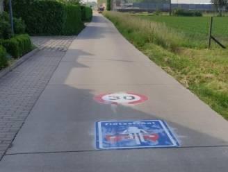 Kruispad wordt fietsstraat met tonnagebeperking